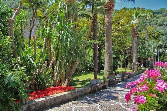 Grand Hotel Parco Del Sole: Giardino Hotel