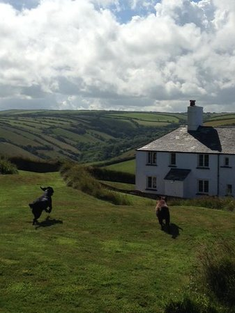 Treveague Farm Cottages: The view of the house heading in land.