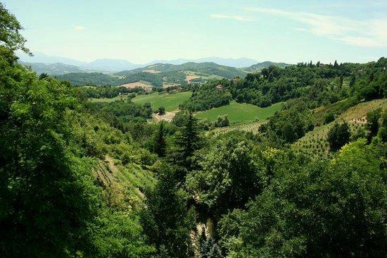 Residenza d'Epoca San Girolamo : Le colline marchigiane