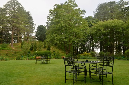 Wildflower Hall, Shimla in the Himalayas: Front lawn