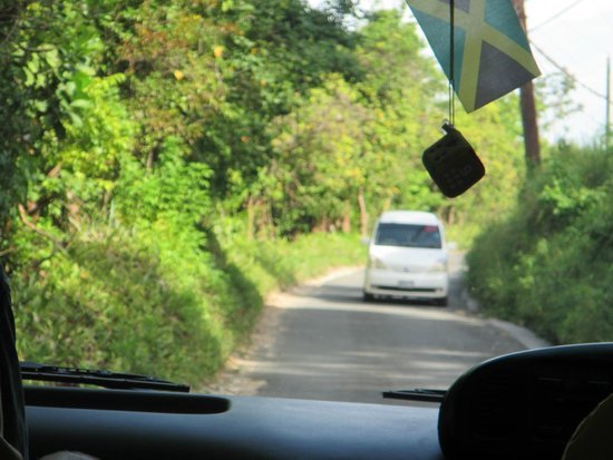 Sandals South Coast: This is what scares people on the ride to the resort, this is a two lane road in Jamaica