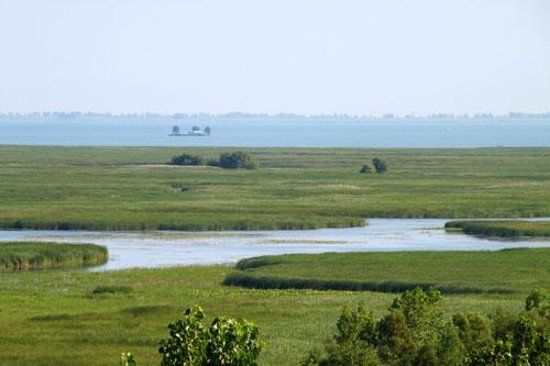 Port Rowan, Canada: View of the Marsh in Turkey Point