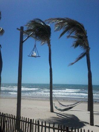 Rede Beach: Vista do restaurante.