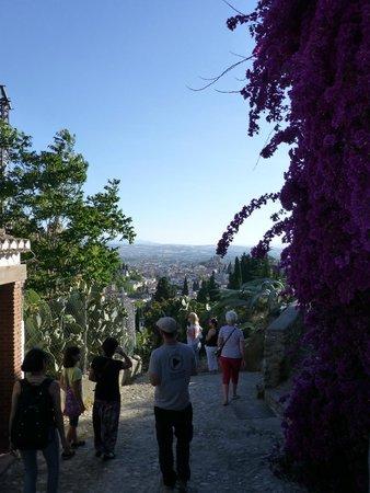 Play Granada: Going downhill