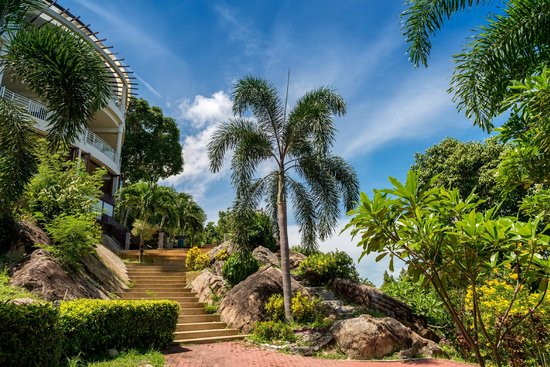 Sunset Hill Resort : Tropical Grounds