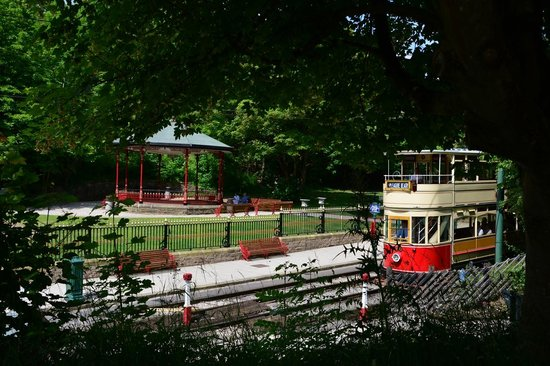Crich Tramway Village: tram through the trees
