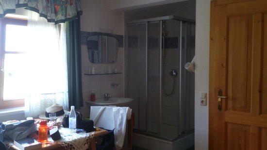 Haus Trausner: The shower in the room. It may be a bit embarrassing as it's not totally opaque