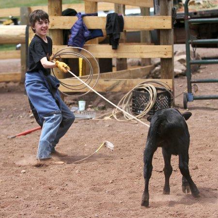 Black Mountain Ranch : Got one!