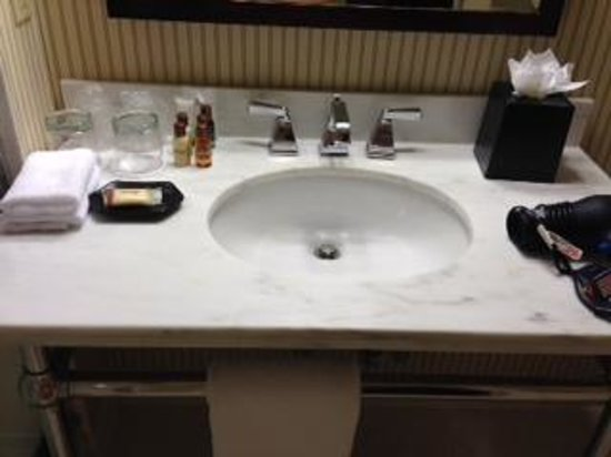Sheraton JFK Airport Hotel : Beautiful Vanity/sink area