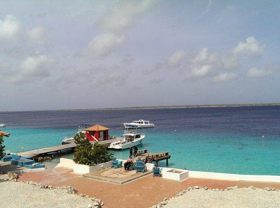 Captain Don's Habitat: View from a Jr. Suite