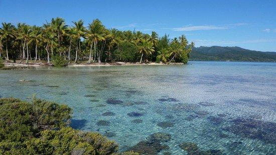 Vahine Island - Private Island Resort: Vahine Island et son jardin de corail