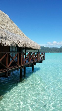 Vahine Island - Private Island Resort: fare Vau (bungalow pilotis 8)