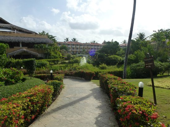 Viva Wyndham Dominicus Palace: belle vue