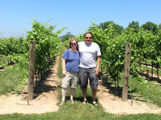 Inniskillin Wines at the Brae Burn Estate: At the site