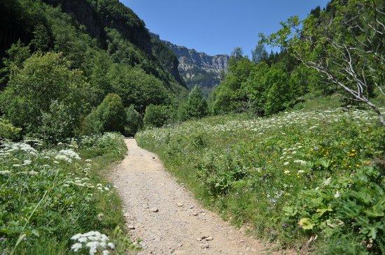 Parque Nacional de Ordesa: wandelpad tussen bloemen en kruiden