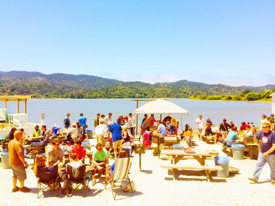 Tomales Bay Oyster Co.: When the overcast haze burns away, it can get HOT!