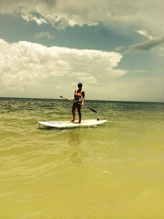 Ace Performer Watersports Rentals: Fun in Sanibel