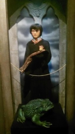 The National Wax Museum Plus : Harry Potter.