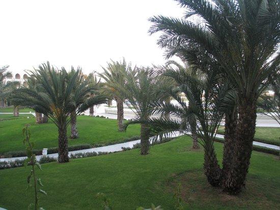 Iberostar Averroes: View from balcony