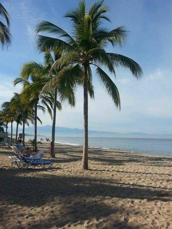 Hotel Riu Palace Pacifico: Beach area