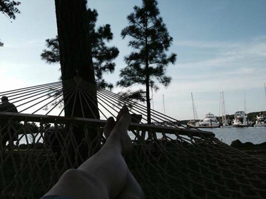 The Inn at Osprey Point: Relaxing in the hammock down by the water