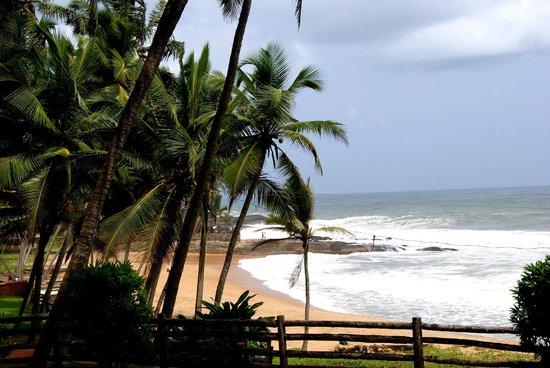 Coconut Bay Beach Resort: Vue du jardin