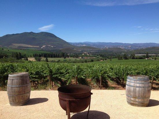 Laujor Estate Winery: The patio area