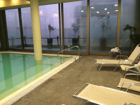 Hotel Plaza el Bosque Ebro: Área da piscina