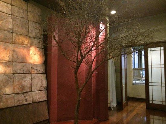 Hotel Plaza el Bosque Ebro: Área do hotel próximo ao restaurante