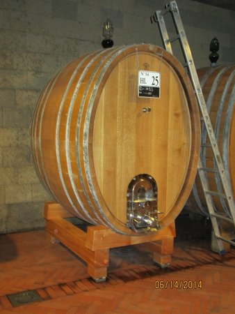 Tuscan Wine Tours by Grape Tours : In the cellar