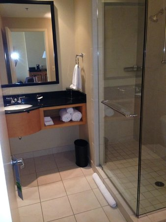 Renaissance Chicago O'Hare Suites Hotel : Large modern bathroom with great shower!