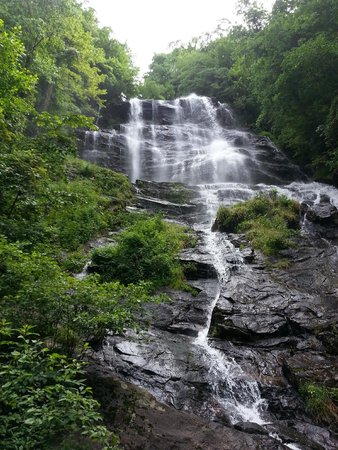 Amicalola Falls State Park : From the observation deck