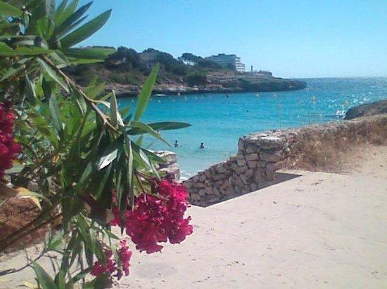 Hotel Club Cala Marsal: cala marcal