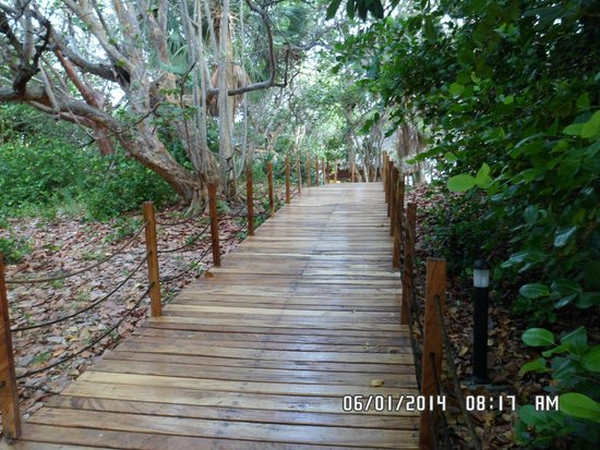 Meliá Las Antillas: camino a la playa un paraiso!!!