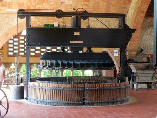 Bodegas Codorniu: Grape crushing machine