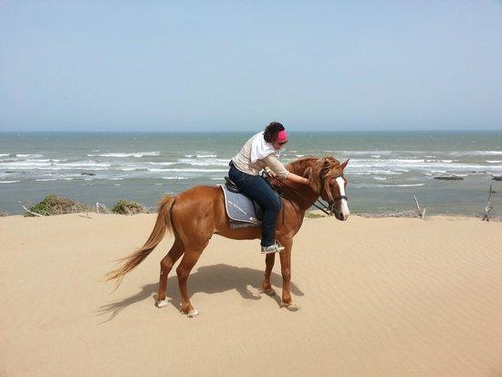 Equi Evasion: Heerlijke strandrit met Mabrouk!