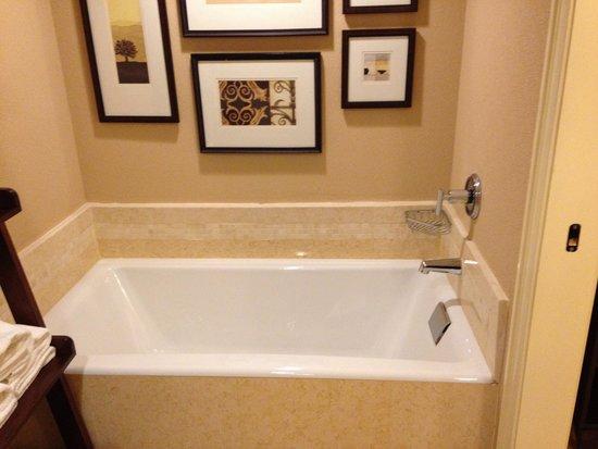 Wyndham Grand Chicago Riverfront : Huge soaking bathtub