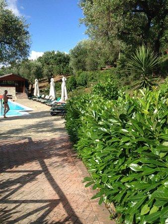 Agriturismo I Fornari: Omgeving zwembad