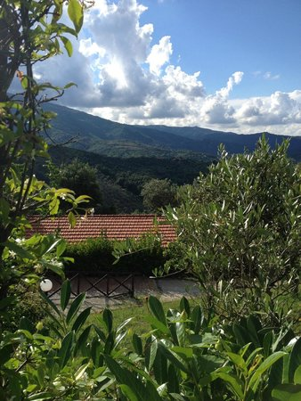Agriturismo I Fornari: Mooi uitzicht