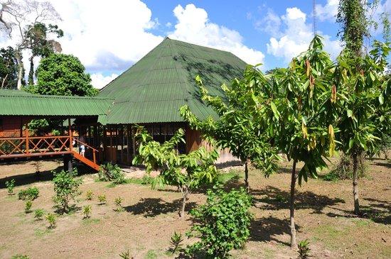 Ecoamazonia Lodge: Piscina cubierta
