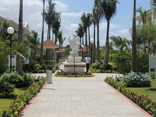 Luxury Bahia Principe Bouganville Don Pablo Collection : Grand Bahia Luxury