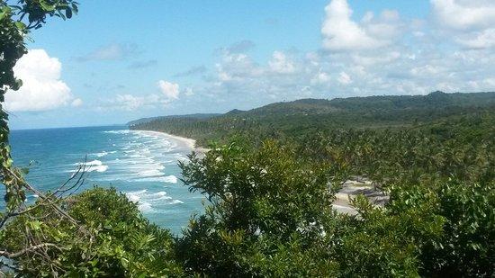 Jeribucacu Beach : Vista da trilha.