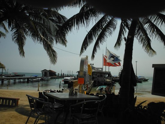 Estel's Dine by the Sea: The fantastic view from Estel's