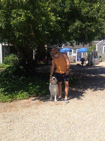 Ship's Knees Inn : Marley the family dog!