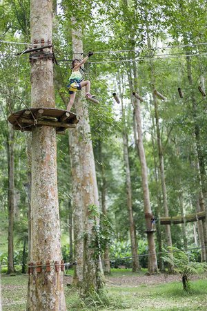 Bali Treetop Adventure Park: Bali Treetop