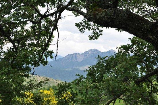 La Foresteria di San Leo : I piccoli Dolomiti