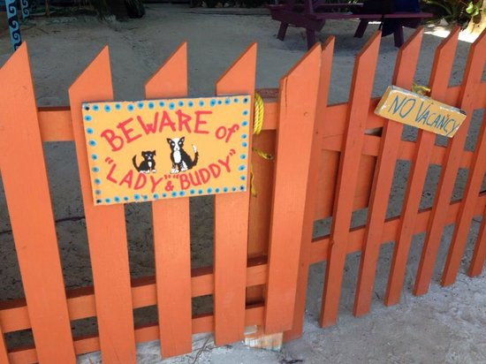Caye Caulker: Pretty Fence