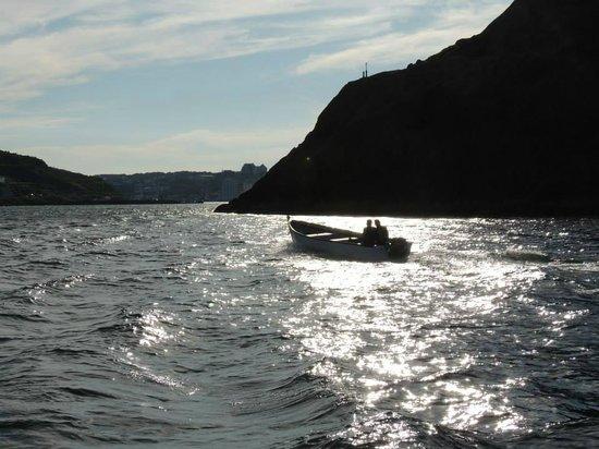 Dee Jay Charters Boat Tours: DJ Trip