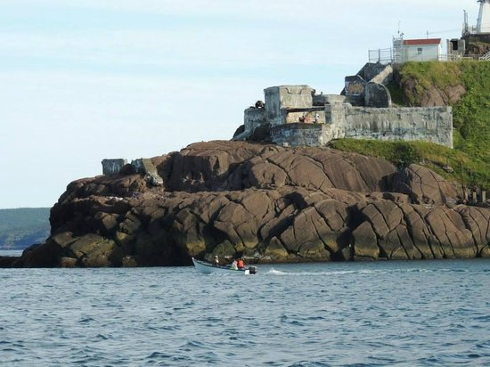 Dee Jay Charters Boat Tours: Fort Amherst
