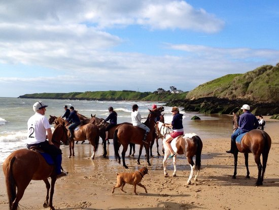 Tinakilly Country House Hotel & Restaurant: Morning Beach Ride